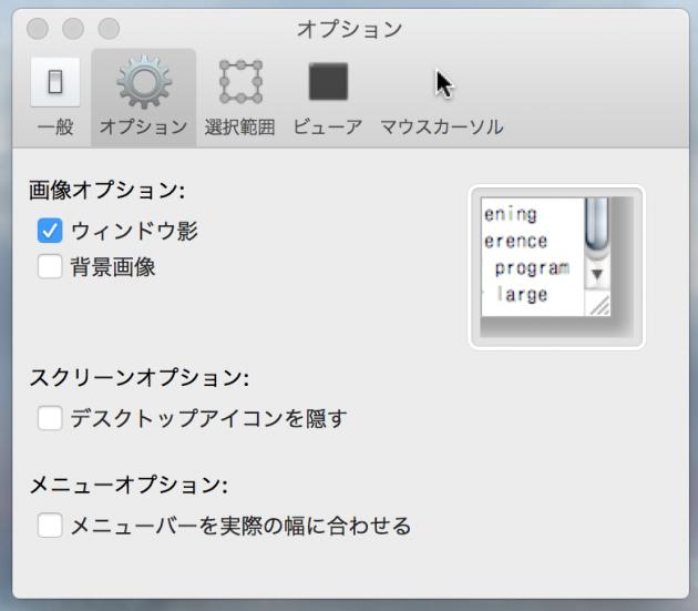 SimpleCapの環境設定「オプション」