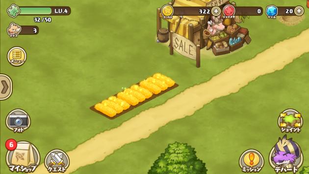 小麦が完成した畑