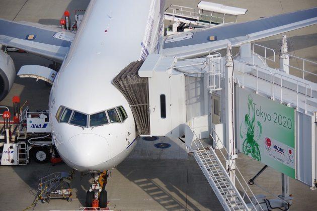 着陸、整備中のANAの飛行機