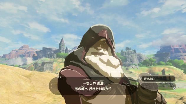 謎の老人に城へ行くのか問われる