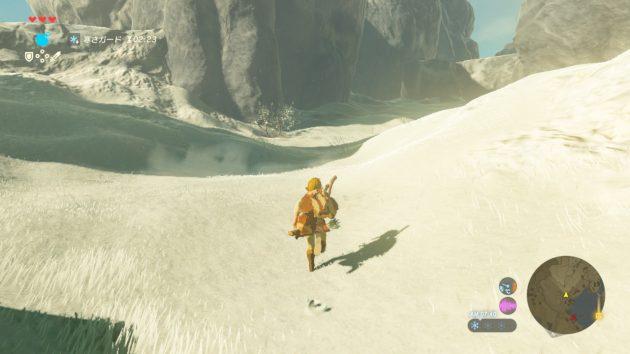 雪原を駆けるリンク