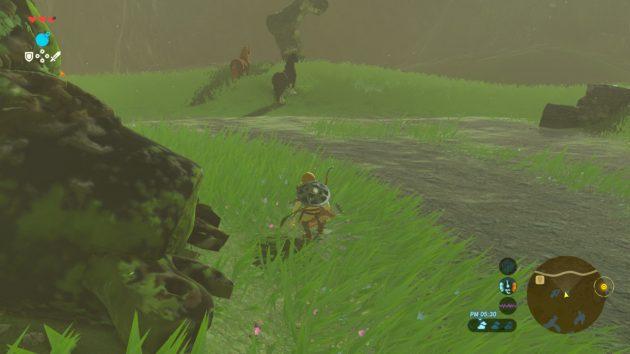 馬の後ろから忍び寄る