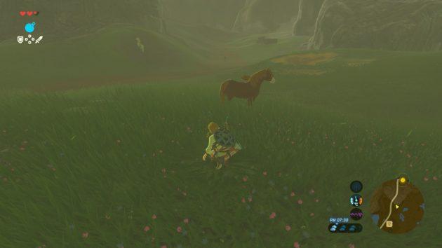 気に入った茶単色馬