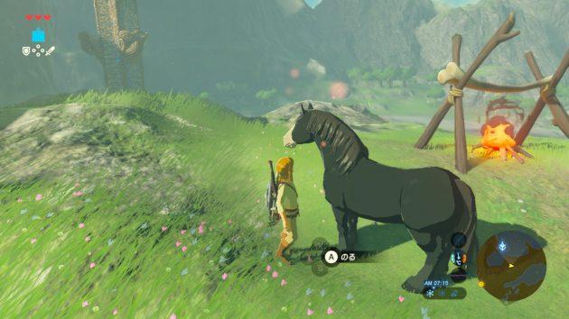 新たな愛馬を捕まえる