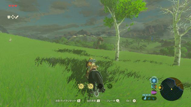 ひたすら馬で走るリンク