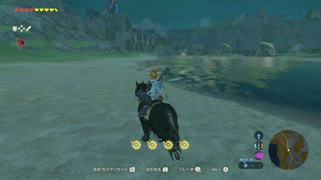 昼夜馬で駆けるリンク