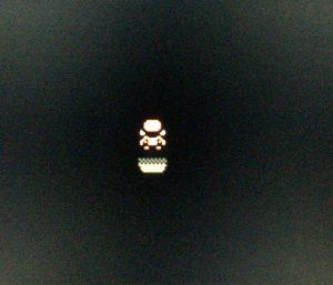 真っ暗なうずまきじまの洞窟(要フラッシュ)