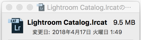 Lightroom Catalog.lrcat