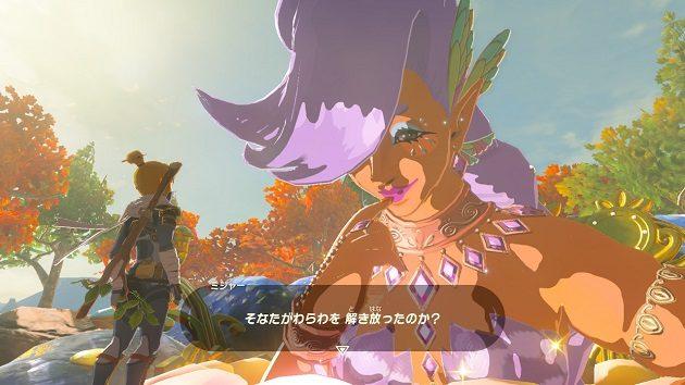 ゼルダ の 伝説 ブレス オブザ ワイルド 大 妖精