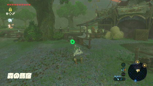 森の馬宿から見える未起動の塔