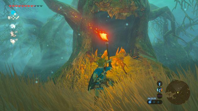 木の口になにかありそう・・・