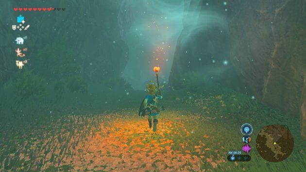 迷いの森の明るい場所