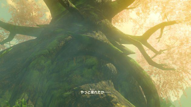 リンクとデクの樹の会話①