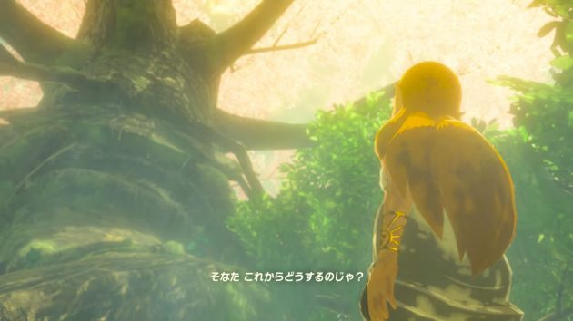 100年前のコログの森でのゼルダ姫の記憶⑤