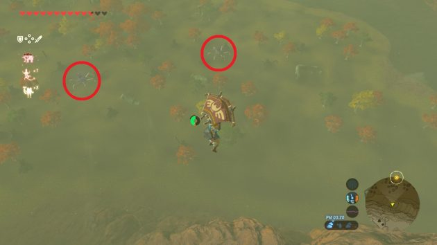 ターリン湿地の2体のガーディアンを空中から確認