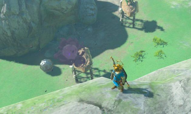 岩の落下で即死するリザルフォス