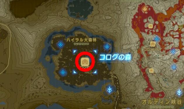 マップのコログの森