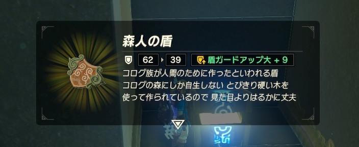 ロヒッタ・チグの祠を攻略_09